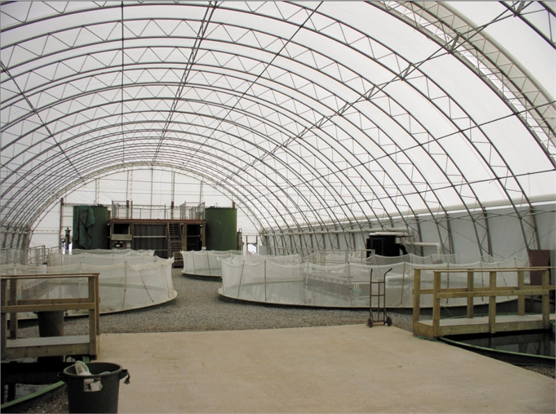 Mbd Fabric Covered Buildings Arch Design Photos Gallery 3